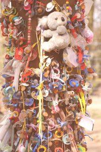 MaxPixel.freegreatpicture.com-Tree-Pforzheim-Zoo-Pacifier-1775375-washed